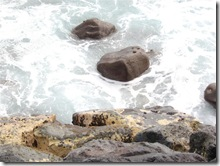hawaii ocean rocks seashore 2