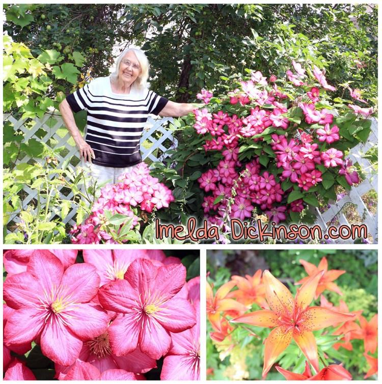 imelda dickinson flower montage-reduced