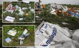 looters-scour-wreckage-malaysia-flight-mh17