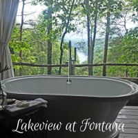 North Carolina Hotel: Lakeview at Fontana