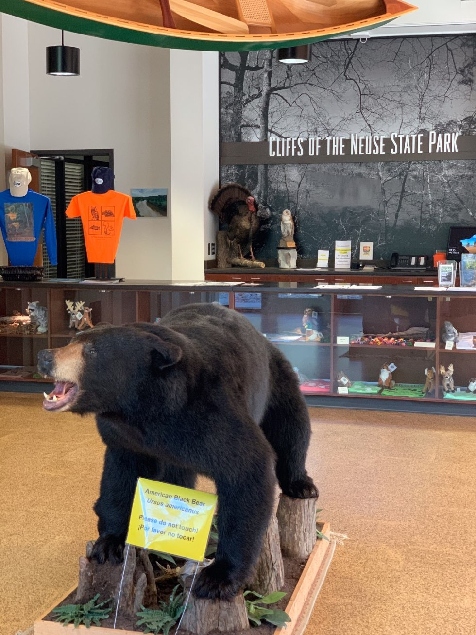 Eastern North Carolina Travel Guide: Top 10 Things to Do in Goldsboro NC - I'm Fixin' To - @mbg0112 | Eastern North Carolina Travel Guide: Top 10 Things to Do in Goldsboro NC by popular North Carolina blog, I'm Fixin' To: image of Neuse state park visitor center.