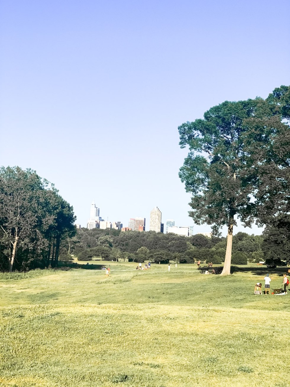 The Top 3 Places to Have a Picnic in Raleigh - I'm Fixin' To - @mbg0112 | Picnic in Raleigh by popular North Carolina blog, I'm Fixin' To: image of Dorothea Dix park.