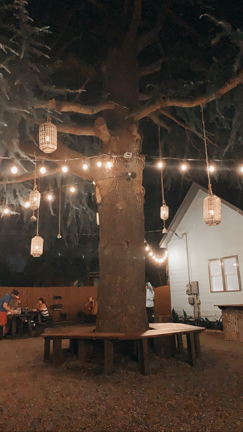 Weekend in Charlotte: Best Breweries and Places to Eat - I'm Fixin' To - @mbg0112 | Weekend in Charlotte by popular N.C. travel blog, I'm Fixin' To: image of a tree with lanterns hanging from it at the Goodyear House.