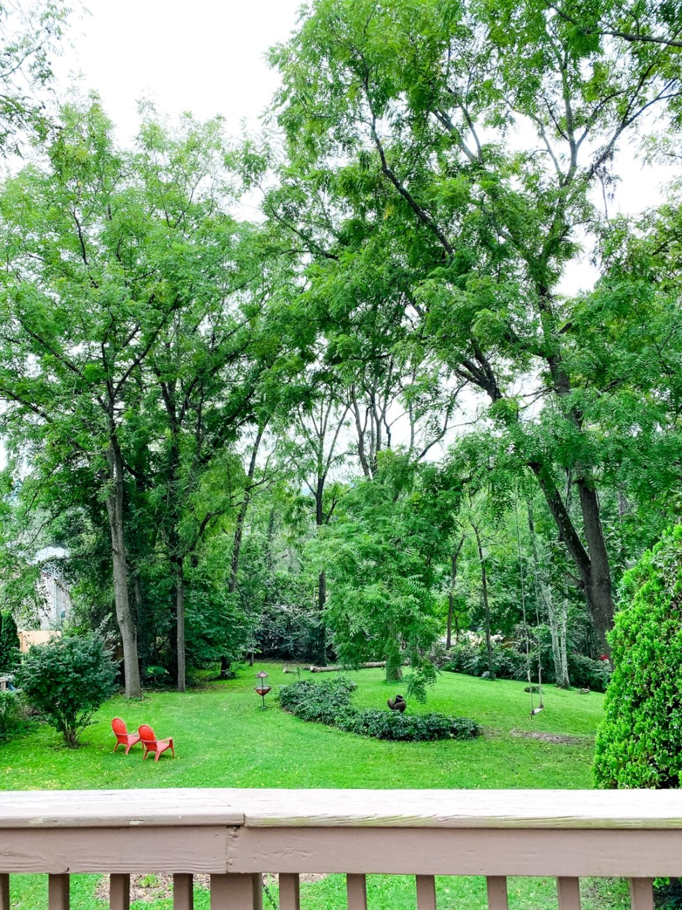A Casual Weekend in Asheville: the Best Things to Do with your Dogs - I'm Fixin' To - @mbg0112   Weekend In Asheville by popular NC travel blog, I'm Fixin' To: image of a backyard with green grass and tall trees.