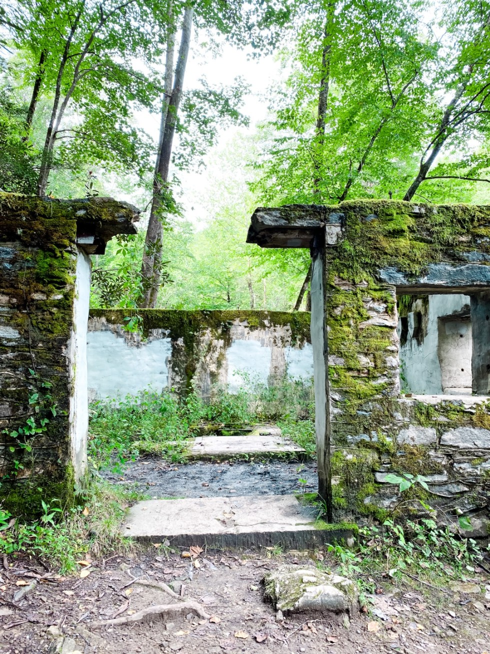 A Casual Weekend in Asheville: the Best Things to Do with your Dogs - I'm Fixin' To - @mbg0112   Weekend In Asheville by popular NC travel blog, I'm Fixin' To: image of the ruins of a stone building covered in moss.