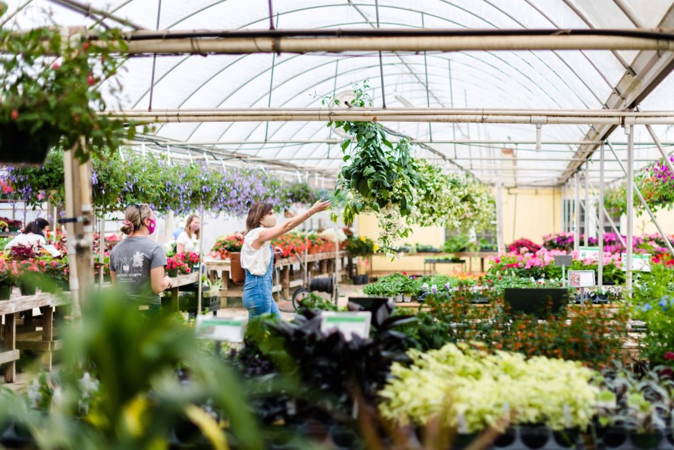5 Spring Planting Tips with Fairview Garden Center - I'm Fixin' To - @imfixintoblog |Best Plants to Plant in Spring by popular NC lifestyle blog: image of a woman looking at hanging plants at the Fairview Garden Center.