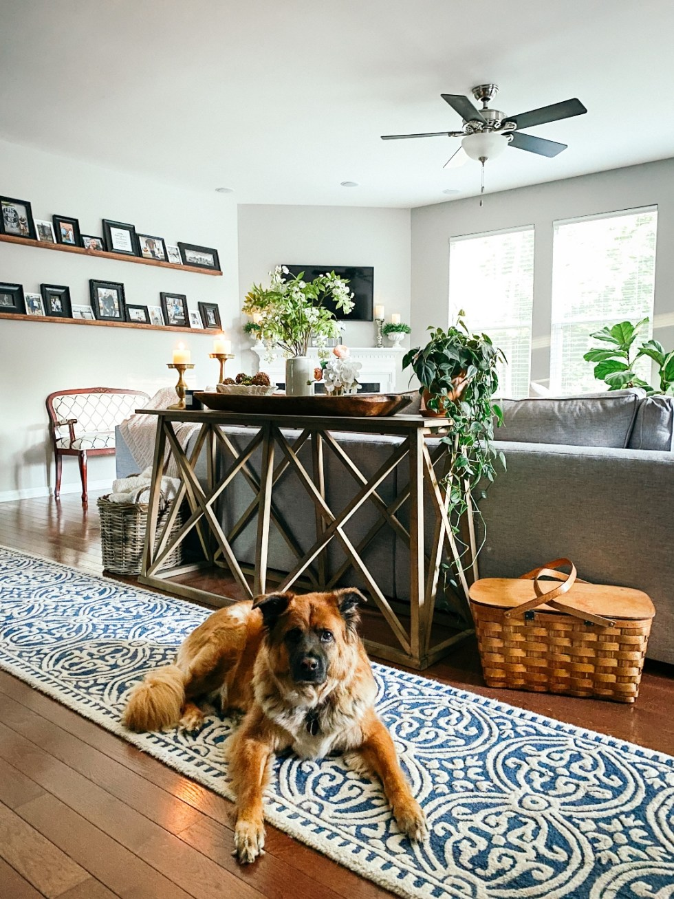 Room Reveal: Blue and Gray Living Room Ideas - I'm Fixin' To - @imfixintoblog. | Blue and Grey Living Room Ideas by popular NC life and style blog, I'm Fixin' To: image of a living room decorated with a blue and white rug runner, light wood sofa table, house plants, floating wood shelves with black picture frames, white pillar candles, wooden picnic basket, blue and white floral wallpaper, and blue and white vintage armchair.