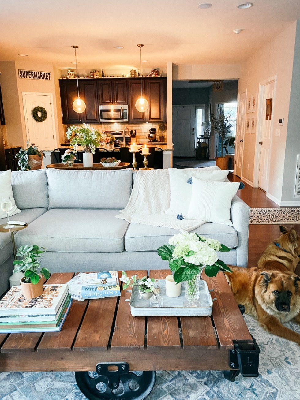 Room Reveal: Blue and Gray Living Room Ideas - I'm Fixin' To - @imfixintoblog | Blue and Grey Living Room Ideas by popular NC life and style blog, I'm Fixin' To: image of a living room decorated with a wooden pallet coffee table, grey sectional sofa, blue and white area rug, and potted house plants.