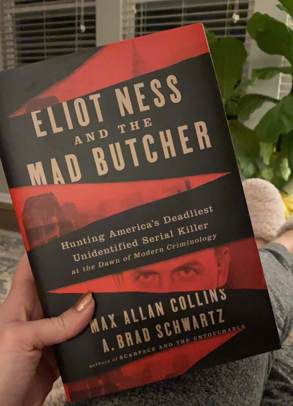 2021 Reading List: What I've Read So Far - I'm Fixin' To - @imfixintoblog | 2021 Reading List by popular NC lifestyle blog, I'm Fixin' To: image of Eliot Ness and the Mad Butcher.