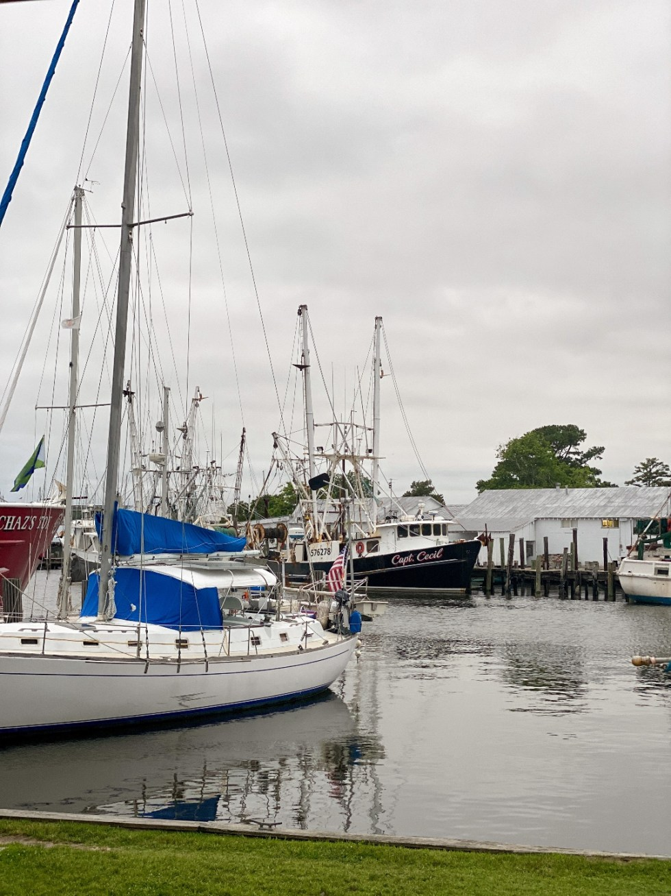 What to Do in Oriental, NC - I'm Fixin' To - @imfixintoblog | Things to do in Oriental NC by popular NC travel blog, I'm Fixin' To: image of some boats docked in the Oriental NC marina.