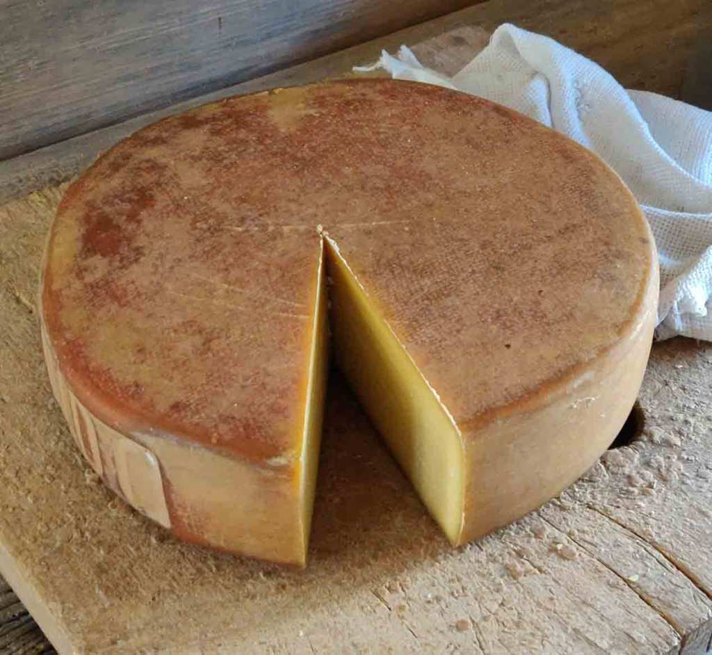 Cheese at Chandanbari