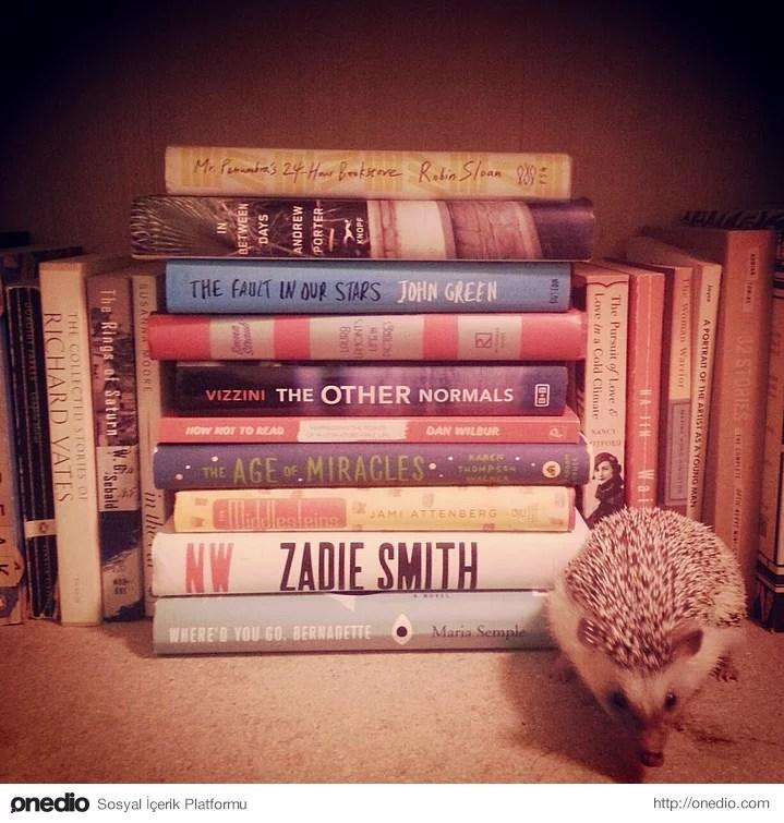 Arkadaşlarınız/aileniz bu kadar kitap okumanızdan yakınır hale gelir ama ne kadar çabalarsanız çabalayın kitapların sizde yarattığı etkiyi anlatmayı başaramazsınız.