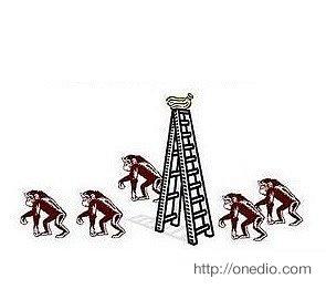 Sonuç olarak daha önce soğuk suya hiç maruz kalmamalarına rağmen merdivene tırmanmaya çalışan maymunu döven 5 adet maymun ortaya çıkıyor.