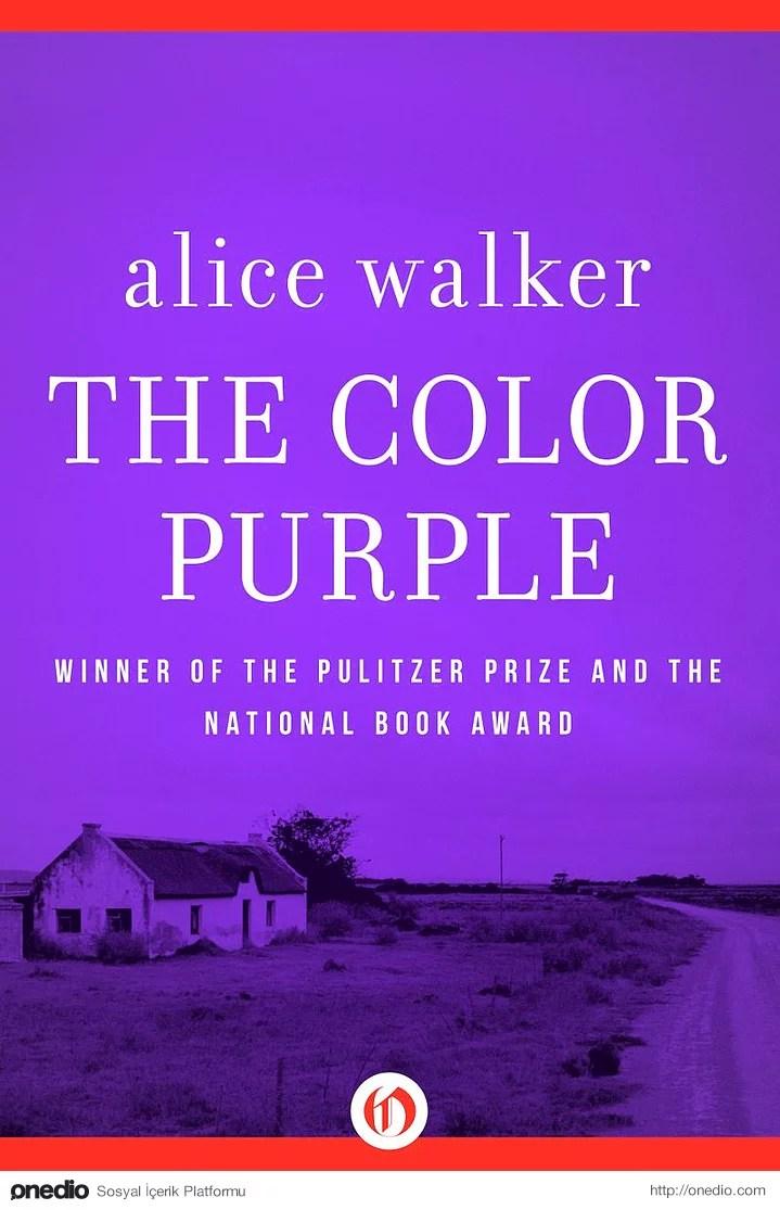 5. Renklerden Moru – Alice Walker