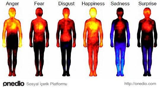 Mutluluk tüm vücudumuzu kaplıyor.