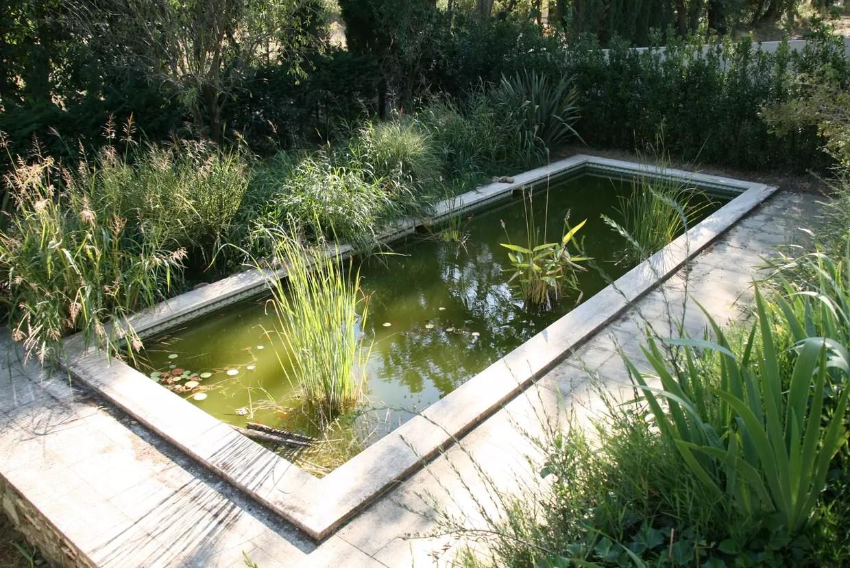 bassin de jardin installer amenager