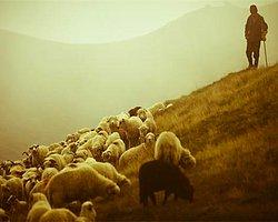Çobanı vurun, koyunlar dağılacaktır.