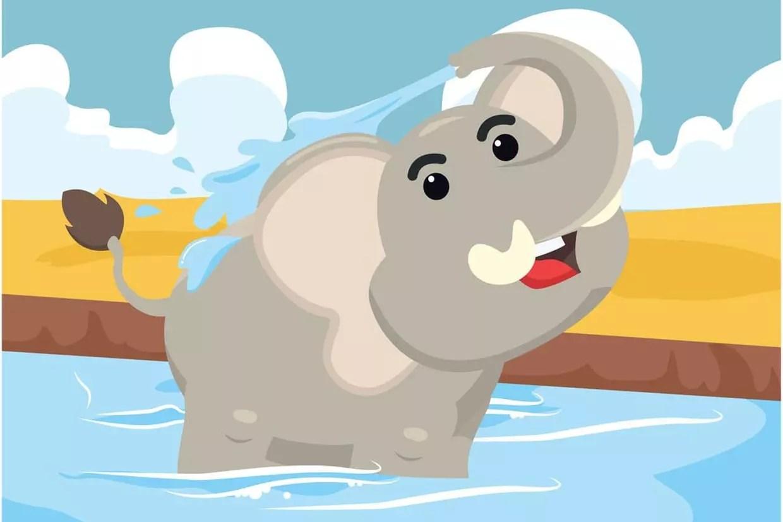 l elephant se douche chansons pour