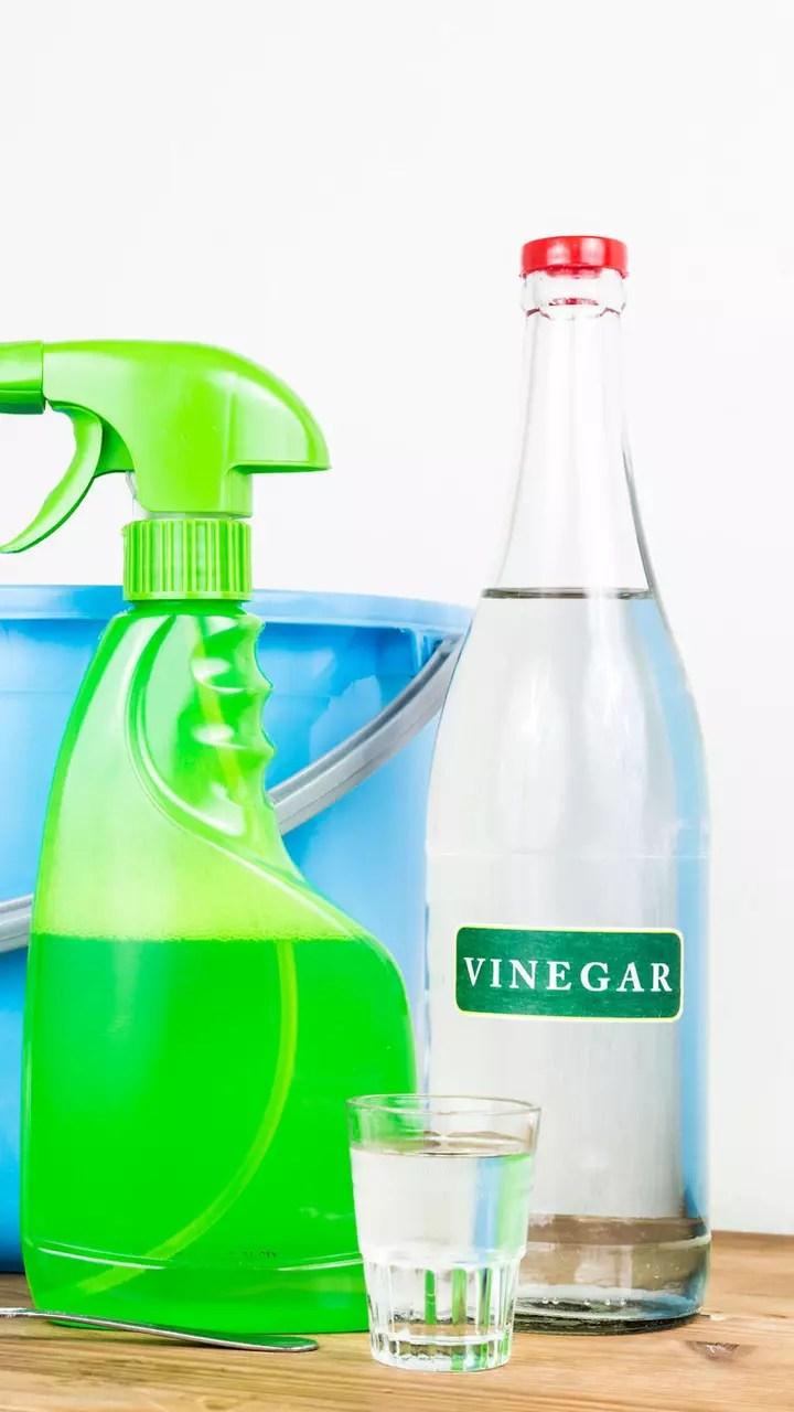 utiliser le vinaigre blanc comme insecticide naturel