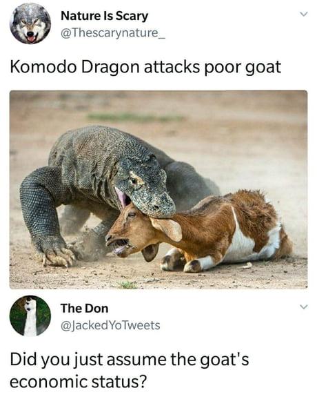 Goat Simulator : Komodo Island