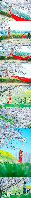 Appreciating The Unusual Beauty Of Japan's Sakura Season