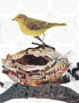 Canary nestlrsusannepeterman