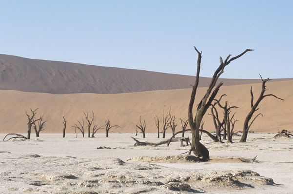 The Namib Desert in Namibia, Africa.