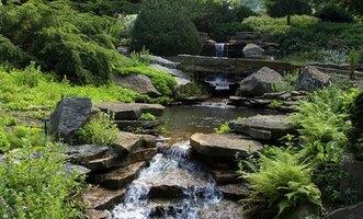 Landscaping Ideas for Backyard Creeks   eHow on Backyard Stream Ideas id=25265