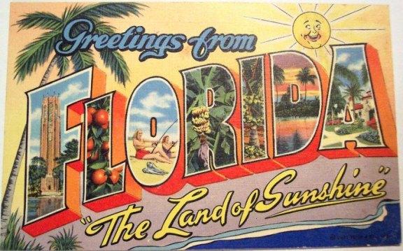 Image result for FLORIDA VINTAGE POSTCARD ART