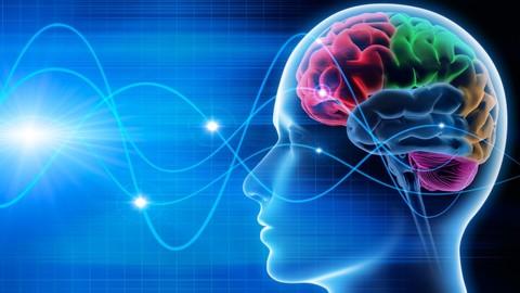 Proactive Mind - Coaching Methodology
