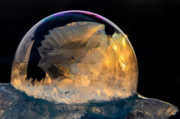 Mysterious Frozen Bubbles By Hope Carter 4