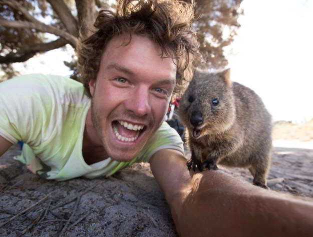 Snapping Selfies with Wild Animals Is a New Trend 17
