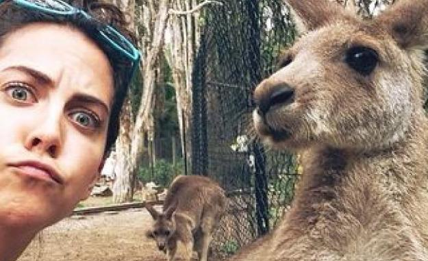 Snapping Selfies with Wild Animals Is a New Trend 25