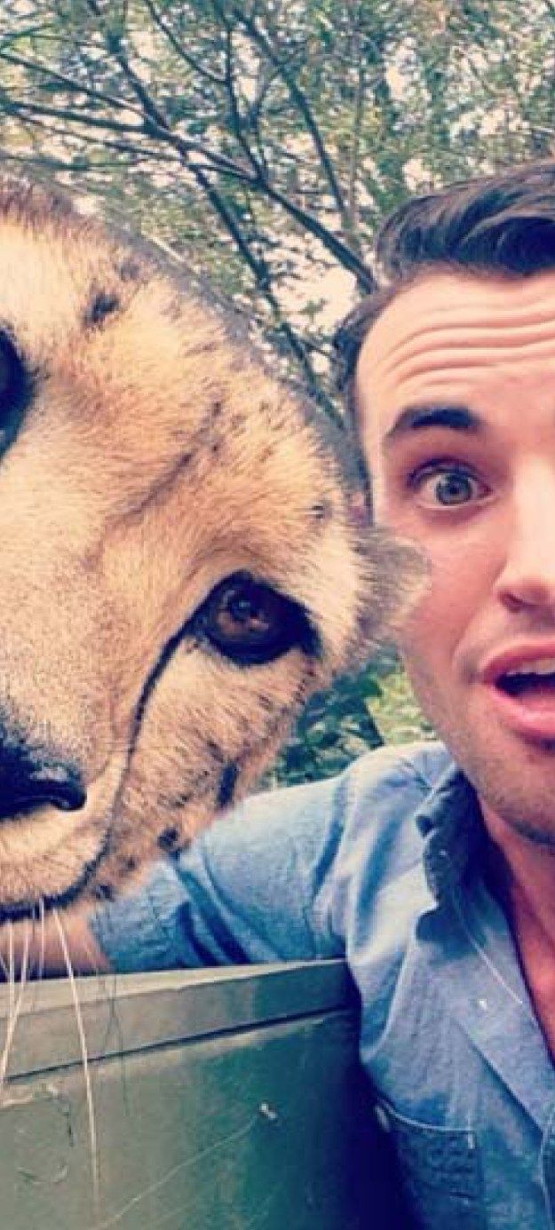 Snapping Selfies with Wild Animals Is a New Trend 27