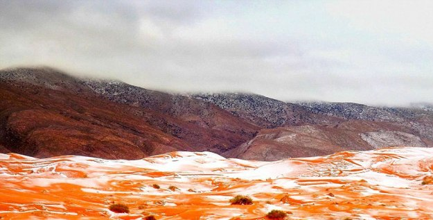 snow-falling-in-the-sahara-desert-is -oddly-satisfying-04