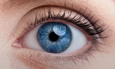 6 Interesting Facts About the Human Eye | Brain Berries