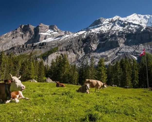 Switzerland | 9 Best Destinations For Solo Travelers | Brain Berries