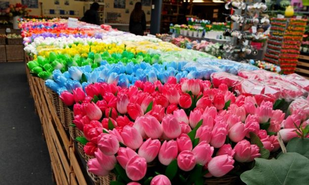 Цветочный рынок в Амстердаме   Топ-8 самых колоритных рынков мира   Brain Berries