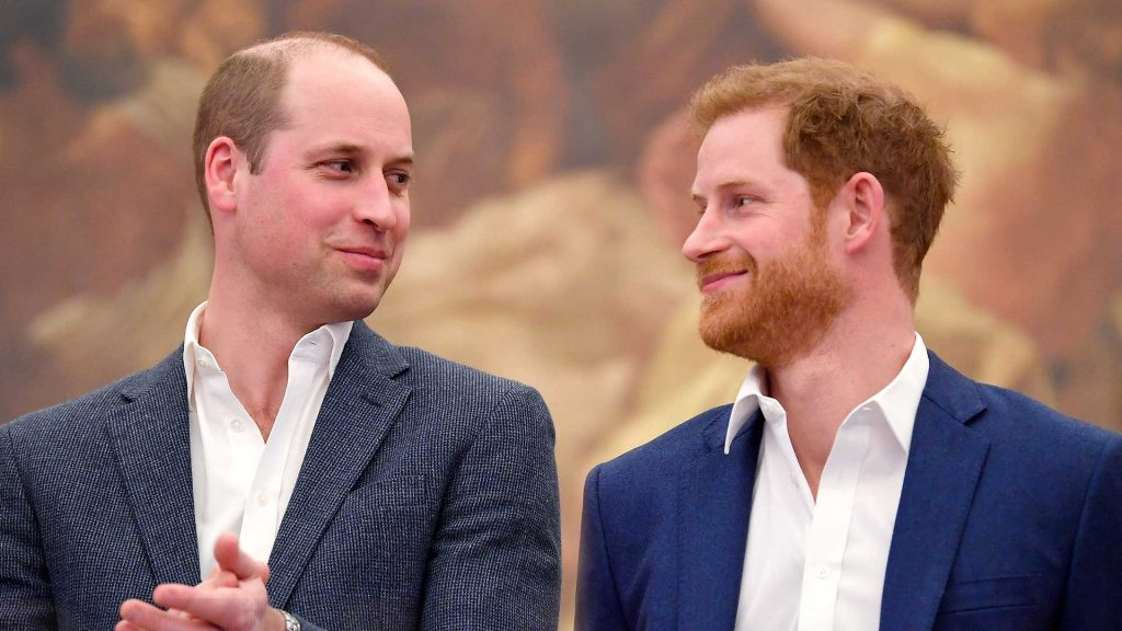 What Really Happened Between Prince Harry and Prince William? #5 | Brain Berries