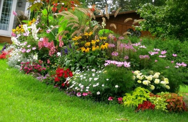 Cvetna Gradina Izbrano Ot Snimka