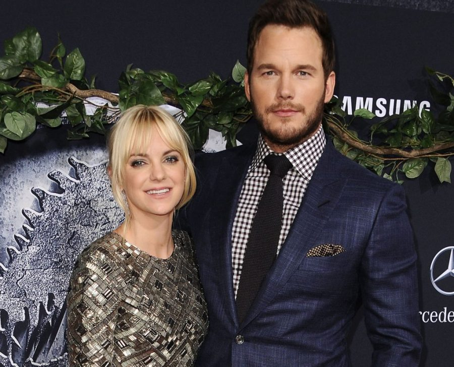 Anna Faris and Chris Pratt  | 7 Fascinating Facts About The Fascinating Anna Faris | Her Beauty
