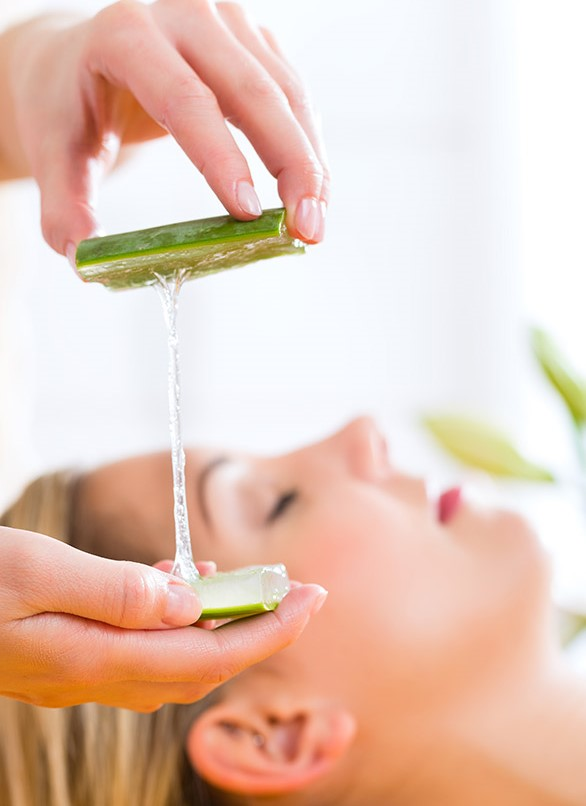 Aloe Vera | 6 Natural Home Remedies for Wrinkles | Her Beauty