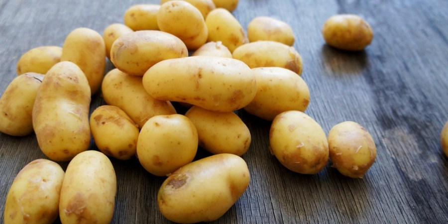 Potatoes | 10 Healthy Foods That Are Poisonous When Eaten Wrong | Her Beauty