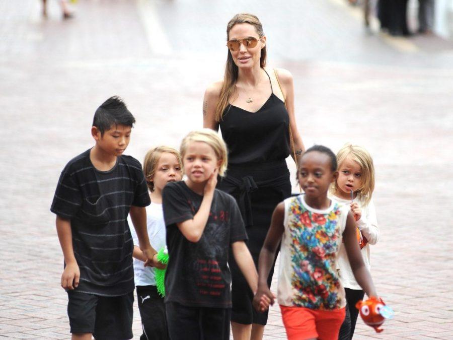 Дети  Анджелины Джоли | 11 малоизвестных фактов об Анджелине Джоли | Her Beauty