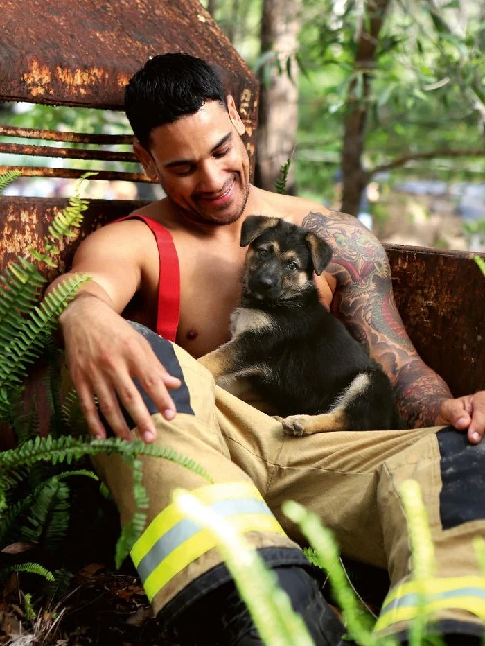 """Dog Calendar"" #2 