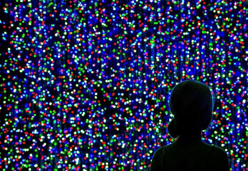 В 2014 году в Канберре создали самую большую в мире композицию из новогодних гирлянд. Она состояла из более чем миллиона лампочек и установила новый рекорд Гиннесса.