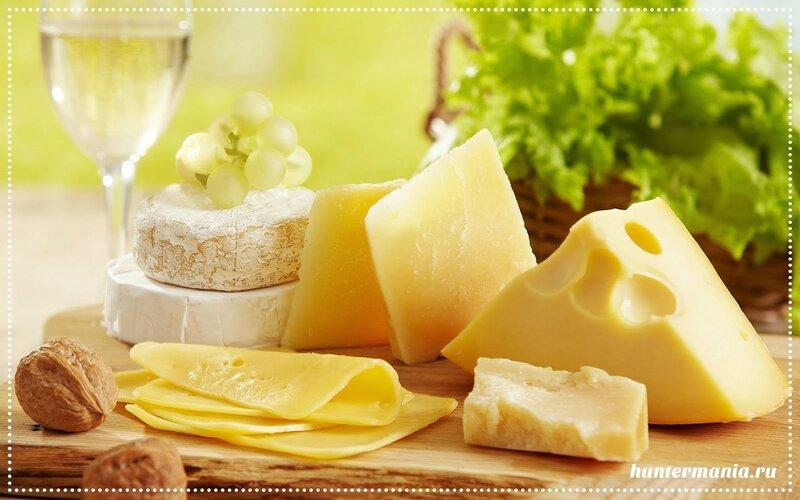 Самые популярные сорта сычужных сыров