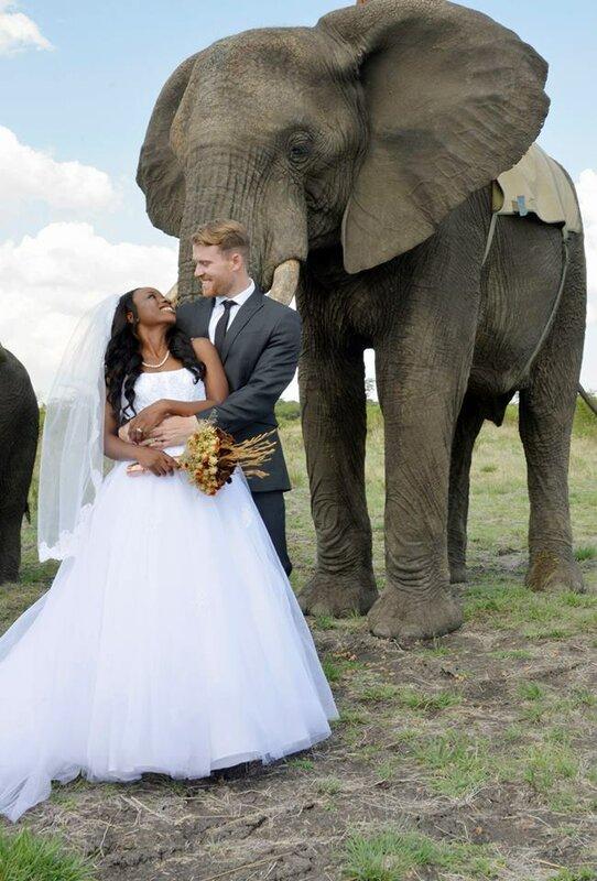 Необычная свадьба в Зимбабве в стиле африканского сафари