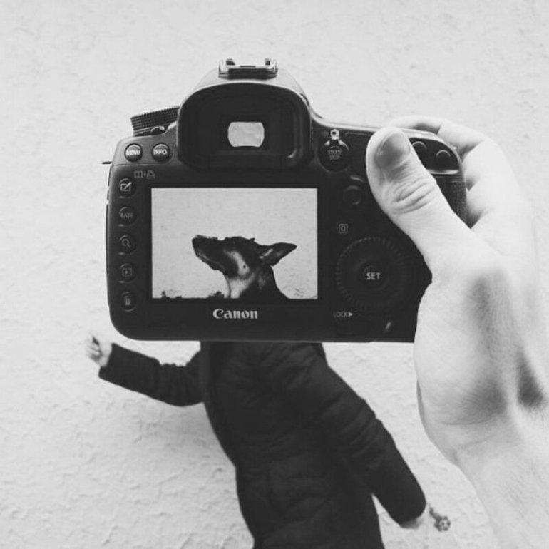Хозяева плюс домашние животные— это веселые фотографии