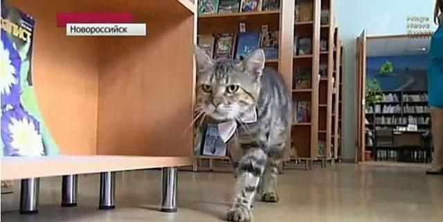 Кузя – помощник библиотекаря